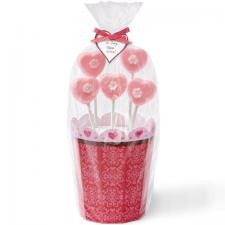 Romantic Pops Flower Pot Kit