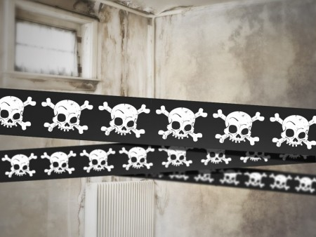 Banner Scull PL