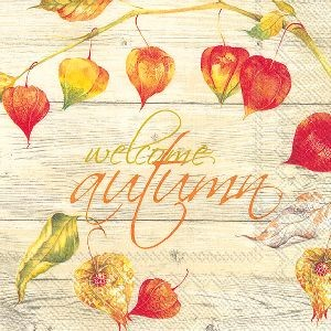 Servietter Welcome Autumn Lunsj 20stk